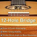 Immagine 1 ortega guitars r121 chitarra classica