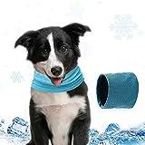 Pañuelo Enfriamiento Perros, Collar Refrigerante Perro, Collar Refrigerante para Mascotas, Pañuelo Enfriamiento Perros con Orificio para Correa Mascota Verano Sensación Fría Bufanda (L)