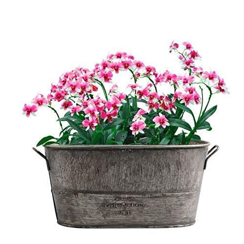 MINGMIN-DZ Dauerhaft Vintage verzinktem Metall Blumentopf Garten Shabby Vase Sukkulenten Eimer Planter Dekor Blume Lanters