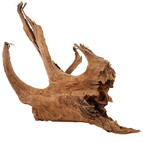Zolux–raíz manglar–15A 25cm