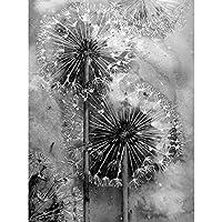 ダイヤモンドペインティングタンポポフルスクエアラウンドストーン刺繡クロスステッチキットラインストーン5Dモザイク装飾白黒アート