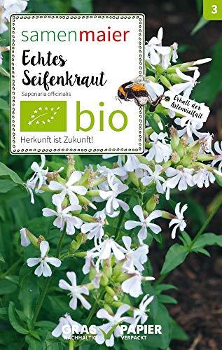 Samen Maier 3021 Echtes Seifenkraut (Bio-WIldblumensamen)