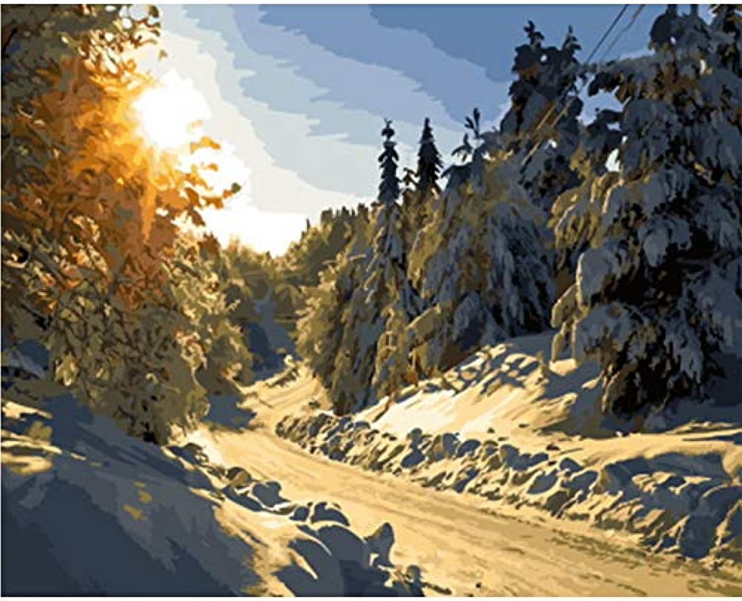 CAYYOU DIY picture oil painting by numbers wall decor painting on canvas for home decor winter snow, Framed, 50x60cm