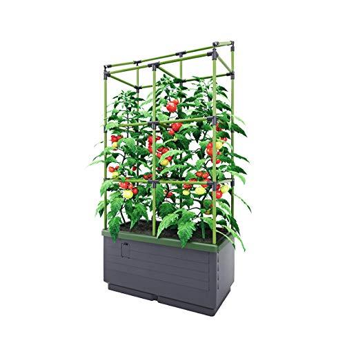 Bio Green JGL-T, City Jungle, Der kleine Garten für Balkon und Terrasse