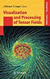 Visualization and Processing of Tensor Fields: Proceedings of the Dagstuhl Workshop (Mathematics and Visualization) - Joachim Weickert