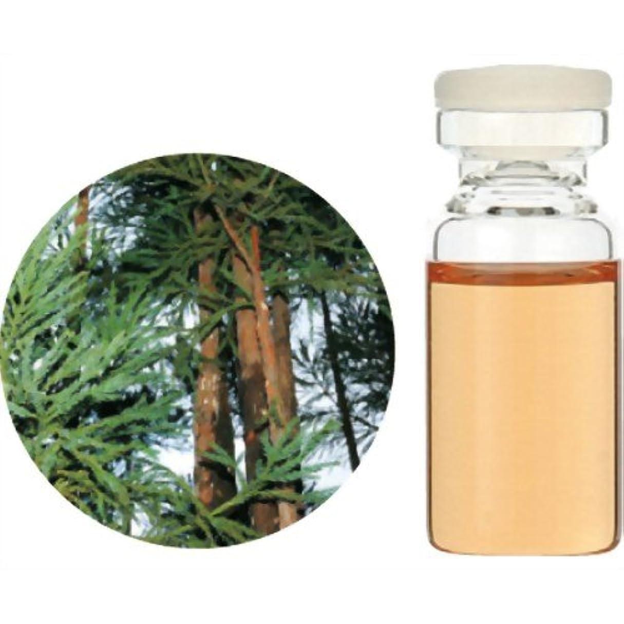 ビールしかしながら数字生活の木 Herbal Life 和精油 杉(木部) 3ml