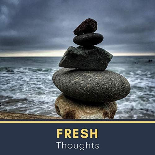 Focus Ambience & Meditation Rain Sounds