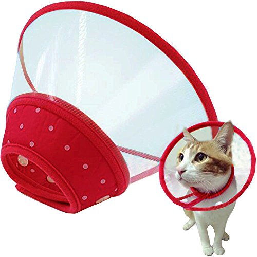 Bolbove Pet Plastic Clear Cone Recovery E-Collar with Dots Design Soft Edge for Small Dogs & Cats (Medium, Red)