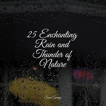 25 Enchanting Rain and Thunder of Nature