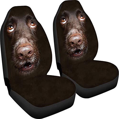 Juego de 2 fundas para asiento de coche, transpirable, universal, con diseño de perro marrón, fácil de instalar y limpiar, apto para camiones, furgonetas, SUV, etc.