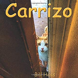 Best the cat's story pens Reviews