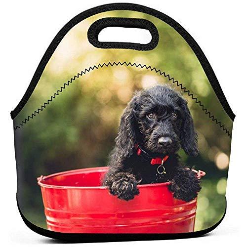 Mittagessen Taschen Hund Eimer Tier Canine Cute Pet Neopren Isolierte Einkaufstasche Box Für Männer Frauen Büroarbeit Picknick Reise
