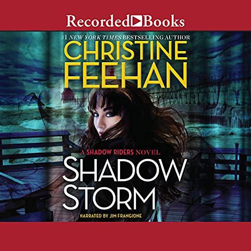 Shadow Storm: Shadow Rider, Book 6