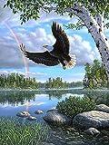 Pintura por números Bricolaje Pintura al óleo Águila voladora en el lago pintura por número Kit Pintado A Mano Por Números Pintura Al Óleo Kits De Pintura Digital 40x50 cm(Sin marco)