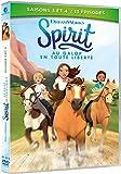 Spirit, au Galop en Toute liberté-Saisons 3 et 4