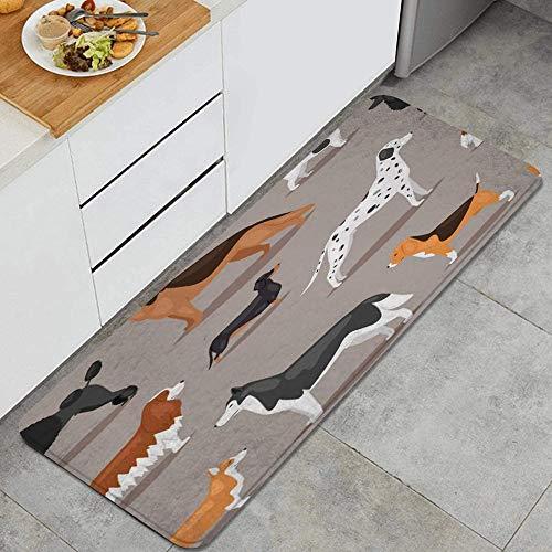 VAMIX Tappeto da Cucina,Diversi cani di razza cucciolo carino cucciolo animali fauna segni simboli,antiscivolo passatoia da cucina antiscivolo zerbino tappetino per il bagno