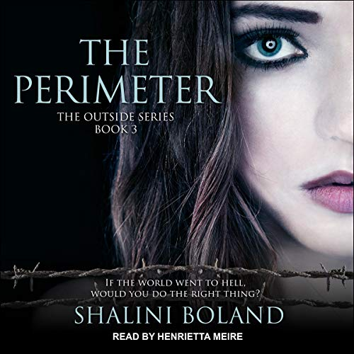 The Perimeter cover art
