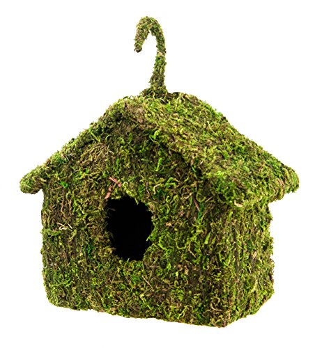 Super Moss 56036 Vogelhaus, 15,2 x 20,3 cm, frisches Grün
