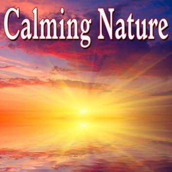 Calming Nature - Sounds of Nature