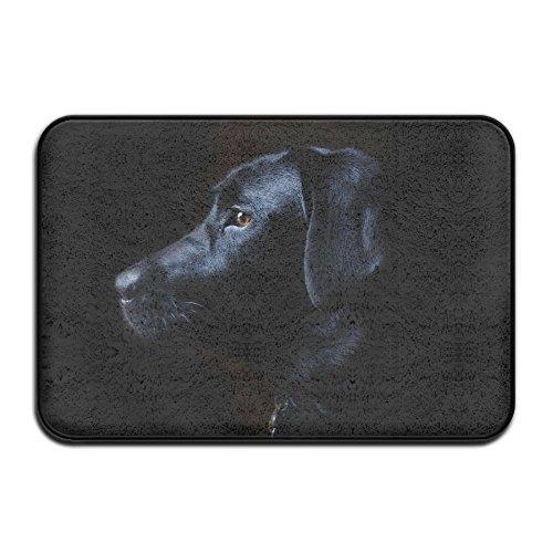 Qbeir Home Fußmatte Labrador schwarz Fußmatte Fußmatten Eingang Teppiche rutschfeste 4060Für Indoor Outdoor