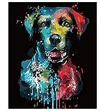 Pintura Acrílica al Óleo por Números Animales Coloridos sobre Lienzo Decoración del Hogar Lienzo Pintura DIY 50X60Cm con Marco