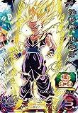 スーパードラゴンボールヒーローズ UM12-SEC3 孫悟飯:少年期 UR