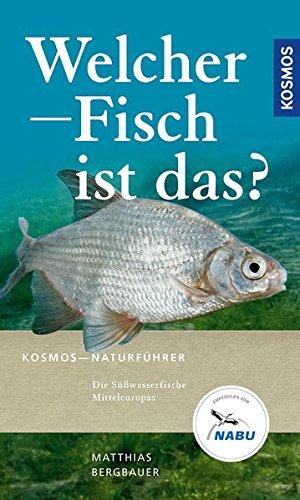 Welcher Fisch ist das?