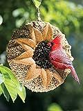 Songbird Tweets Sunflower Wreath