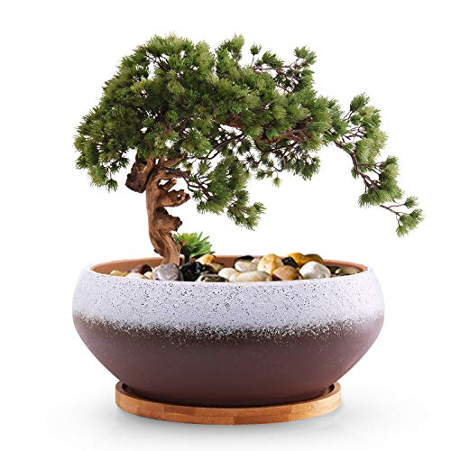 EPFamily 8 Inch Ceramic Round Succulent Planter with Drainage Hole and Bamboo Tray, Modern Large Flower Pot for Herb Garden Bonsai Planting