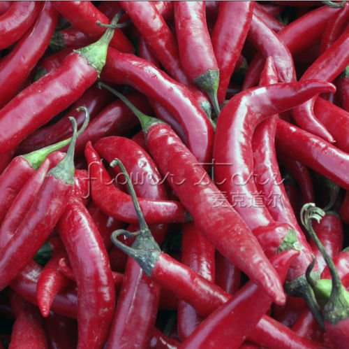 20 Hot Pepper Seeds \