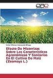 Efecto De Micorrizas Sobre Las Características Agronómicas Y Sanitarias En El Cultivo De Maíz (Zeamays L.)