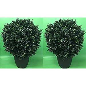 Two 24 Inch x 16 Inch Indoor Outdoor Artificial Boxwood Ball Topiary Bush 2 Foot Potted UV Rated