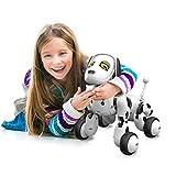 RC Smart Dog, Dinglong Intelligent Remote Control Robot Dog Electronic Pet Educational Toy