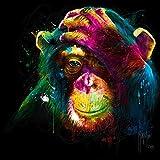 Fertig-Bild - Patrice Murciano: The Darwin's Preoccupations 50 x 50 cm Affe Pop Art bunt schrill modern Kult