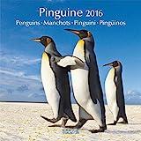 Pinguine 2016: Broschürenkalender mit Ferienterminen