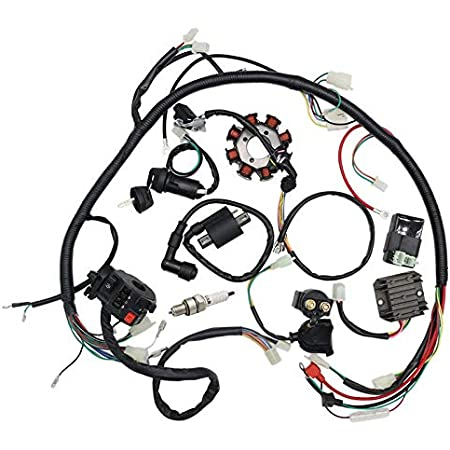 Amazon Com Complete Electrics Wiring Harness Kit Ignition Coil Kits For Chinese Dirt Bike Atv Quad 150 250 300cc Automotive