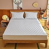 BOLO Funda de colchón impermeable con cremallera, impermeable, para cama y antiácaros, 180 x 200 + 25 cm