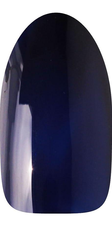 いま傭兵クリープsacra カラージェル No.020 藍