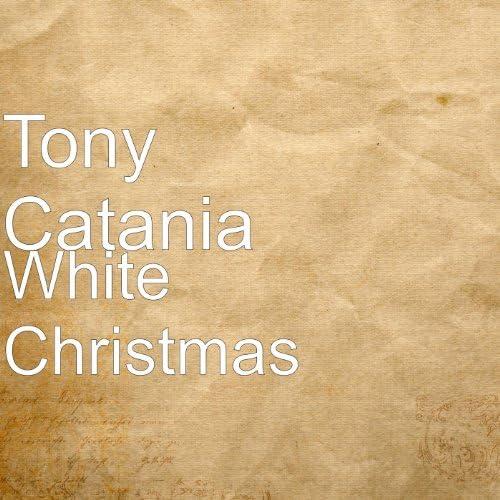 Tony Catania