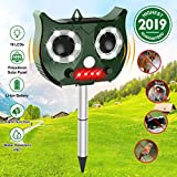 Repellente Gatti Ultrasonic Solar,Difesa Ad Ultrasuoni Impermeabile Con Batteria Al Litio Incorporata E Flash 5 Modalità Regolabile Repeller Animal Ultrasound Per Gatti,Cani,Parassiti,Cervi - OUTERDO