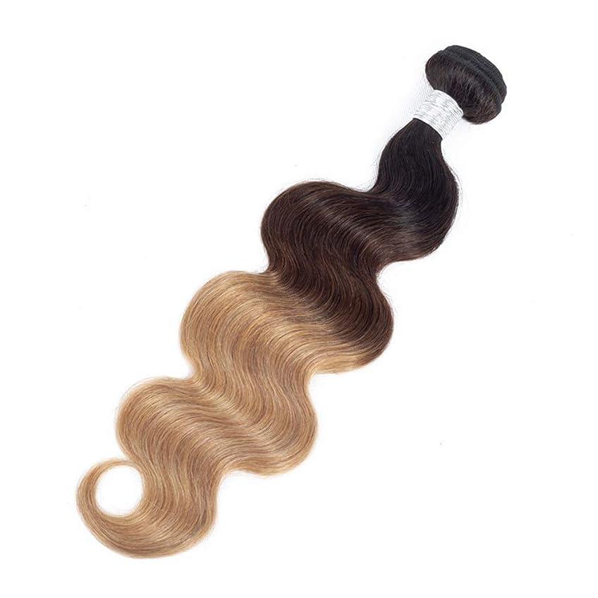 プレゼンター証人おとなしいBOBIDYEE オンブル人毛ブラジルの実体波バージン人毛横糸1バンドル1B / 4/27 3トーンカラーロングカーリーウィッグファッションウィッグ (色 : ブラウン, サイズ : 18 inch)