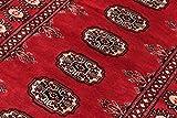 Nain Trading Pakistan Buchara 2ply 231x76 Orientteppich Teppich Läufer Rost/Rosa Handgeknüpft Pakistan - 9