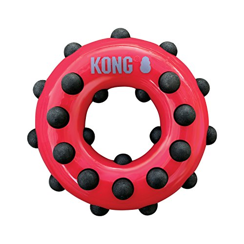 KONG – Dotz Circle – Hundespielzeug zum Kauen und zur Zahnreinigung – Für Kleine Hunde