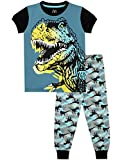 Harry Bear Jungen Dinosaurier Schlafanzug Slim Fit Mehrfarbig 128