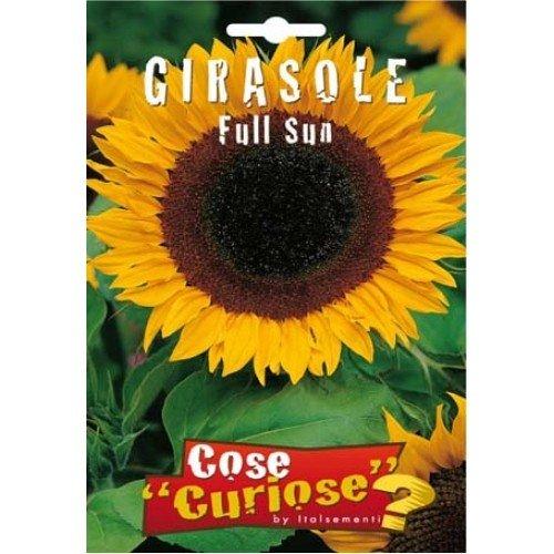 Semi - Girasole Full Sun