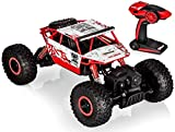 Top Race Telecomando radiocomandato Cool Cars Rock Crawler / Monster Truck 4WD / Off Veicolo stradale giocattolo Batterie da 2,4 GHz. TR-130R