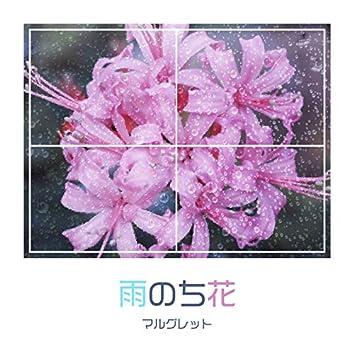 Rain of Flower