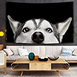 GenericBrands Peek Husky Dog Wall Hanging Animal Colorful Boho Tapestry Wall Art Decor para Dormitorio Sala de Estar Tapiz para habitación