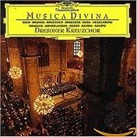 Varios: Musica Divina
