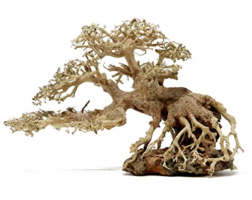Bonsai Driftwood Aquarium Tree BSC (8 Inch Height- 12 inch Length) Natural, Handcrafted Fish Tank Decoration | Helps Balance Water pH Levels, Stabilizes Environments | Easy to Install